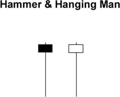 Cây búa Hammer